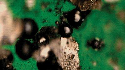 Analyzing Wear Debris In Engine Oils