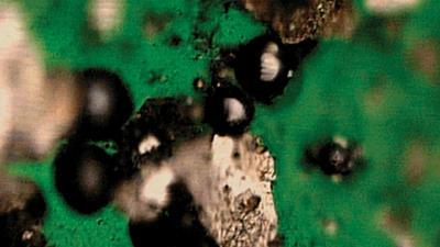Determining the Origin of Wear Debris in Turbine Oil
